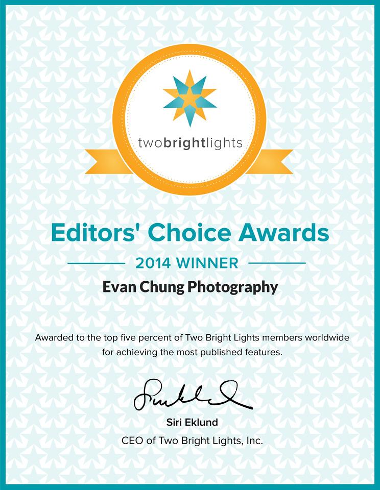 TBL-EditorsChoiceAward2014certificate
