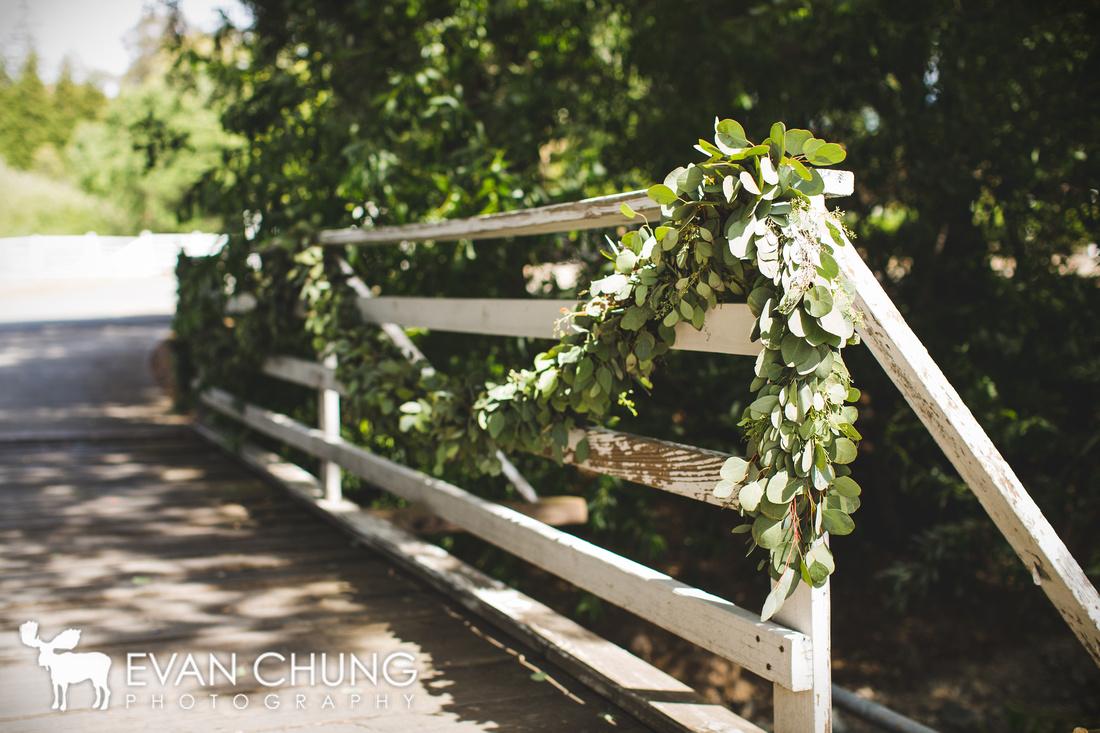 Clayton-farm-5986