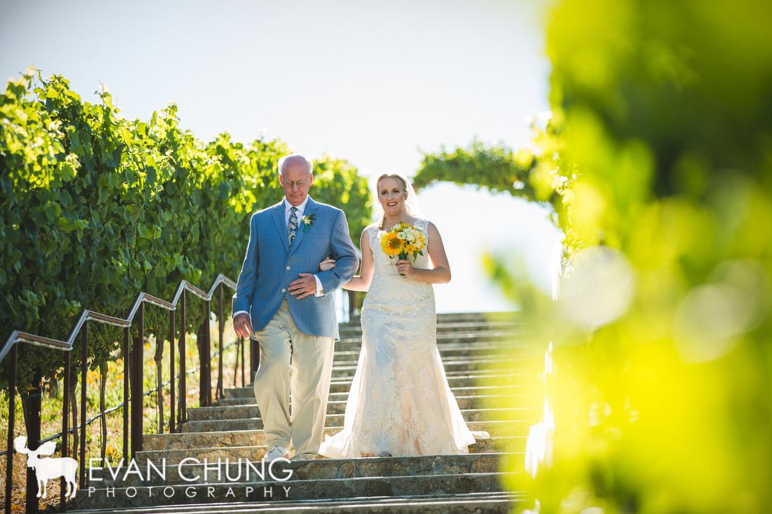 nella-terra-cellars-wedding-5969